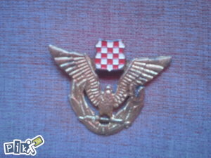 Hrvatski sokol