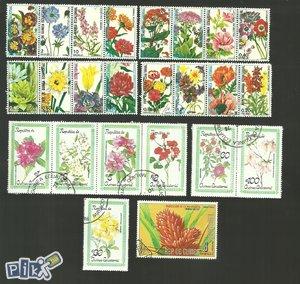 Ekvatorijalna Gvineja - cvijeće