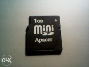 MINI SD KARTICA 1GB