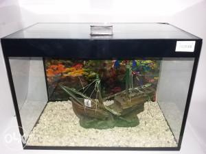 Akvarijum četverougli sa ukrasima 42x25x29