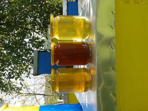 Med,polen,propolis,m.mlijec